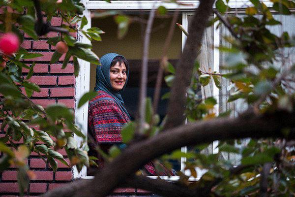 «دختر شیرازی» و «آشفتهگی» به سینماها میآیند