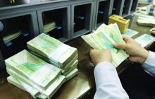 اعطای وام 10 میلیونی به اهالی قلم از اواخر بهمن